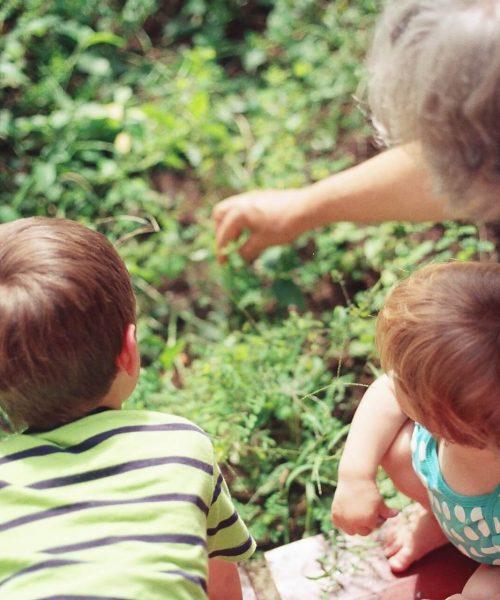 grandparents-custody-lawyers
